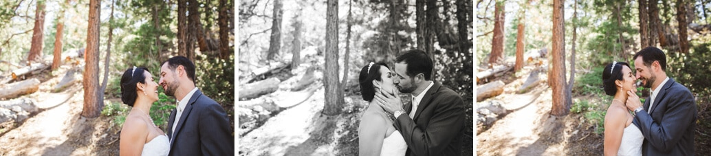 bride and groom kissing in the tahoe pines