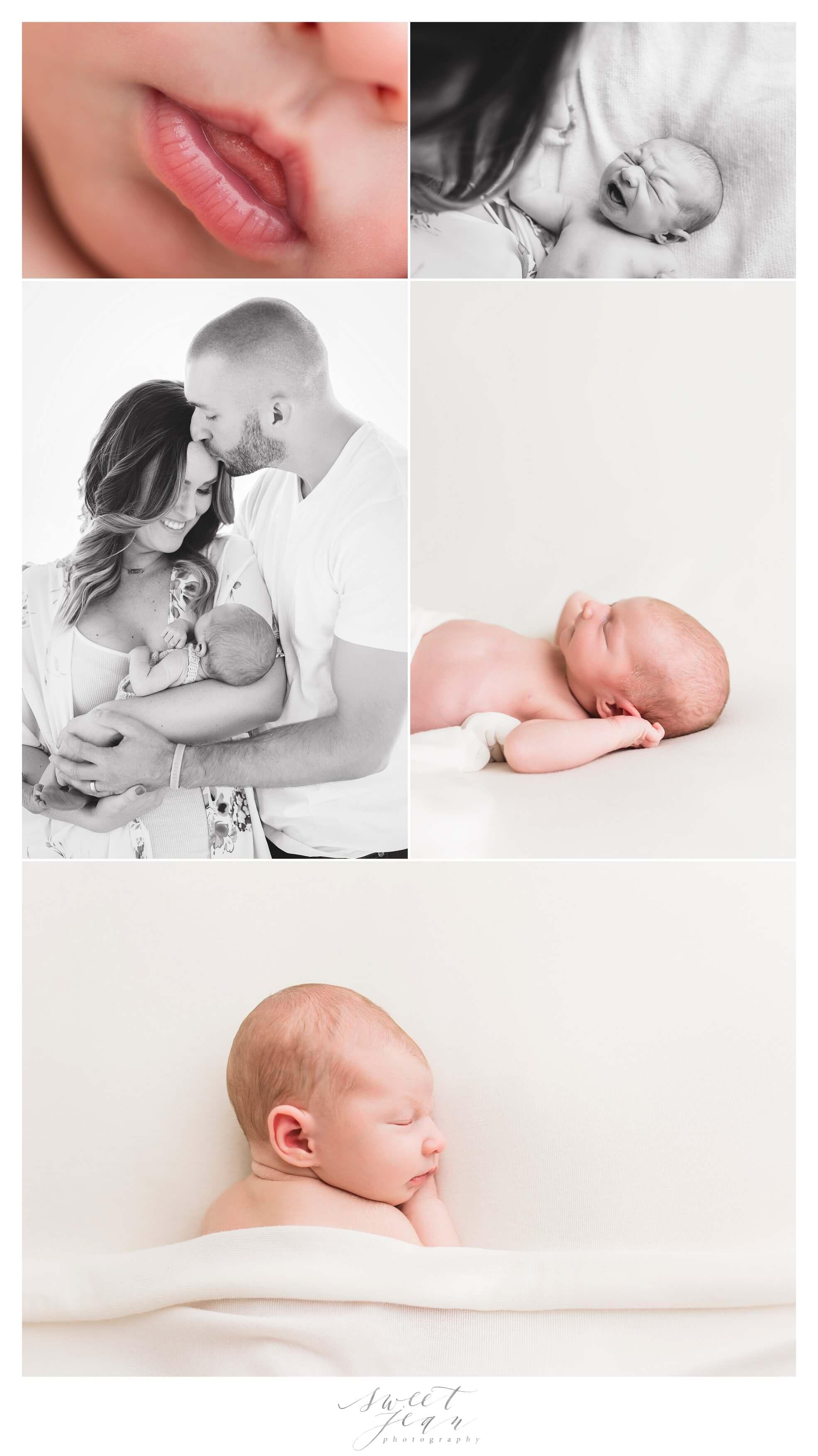 Roseville Newborn Portraits